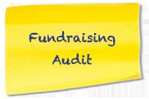 Subtitle-Fundraising-Audit