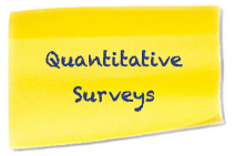 Subtitle-Quantitative-Surveys